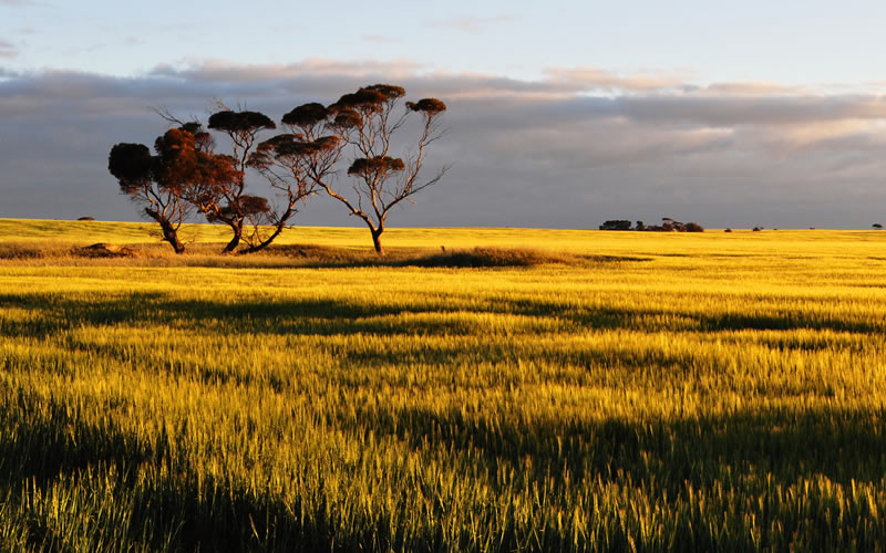 Yorke Peninsula Mount Gambier Accommodation