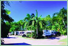 Tropical Hibiscus Caravan Park - Mount Gambier Accommodation