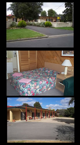 Ace Swan Motel - Mount Gambier Accommodation