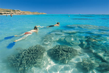 Ningaloo Reef Resort - Mount Gambier Accommodation