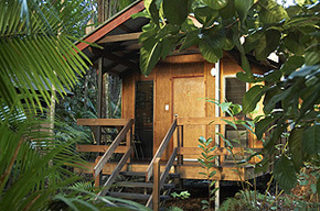 Cape Trib Beach House - Mount Gambier Accommodation