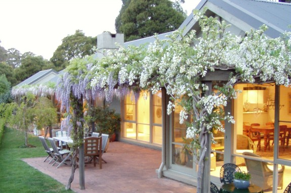 Tomah Mountain Lodge - Mount Gambier Accommodation