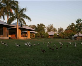 Feathers Sanctuary - Mount Gambier Accommodation