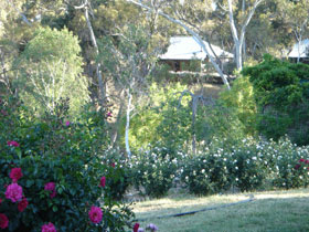 Battunga Bed  Breakfast - Mount Gambier Accommodation