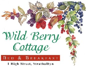 Wild Berry Cottage - Mount Gambier Accommodation