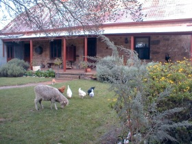 Liebelt House - Mount Gambier Accommodation