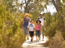 Long Island Caravan Park Cabins - Mount Gambier Accommodation