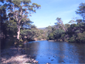 Douglas River Cabin - Mount Gambier Accommodation