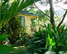 Daintree Valley Haven - Mount Gambier Accommodation