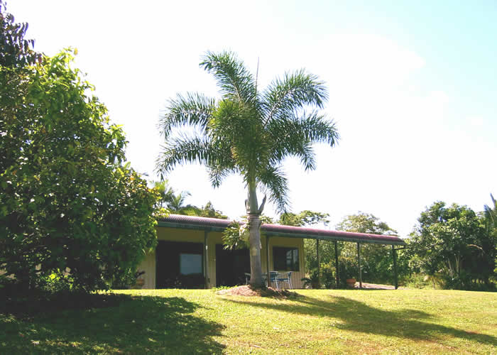 Daintree Mountain View Retreat and Vanilla Beans - Mount Gambier Accommodation