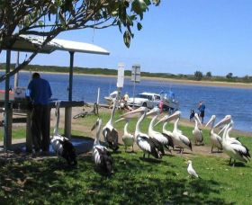 Mountain View Caravan and Mobile Home Village - Mount Gambier Accommodation