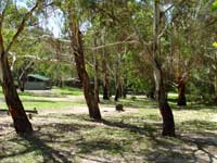 Woods Reserve - Mount Gambier Accommodation