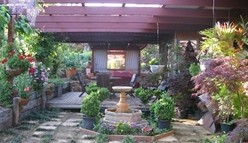 Blossoms Bed and Breakfast - Mount Gambier Accommodation