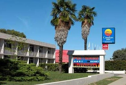 Comfort Inn Posthouse - Mount Gambier Accommodation