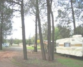 The Kelpie Caravan Park - Mount Gambier Accommodation