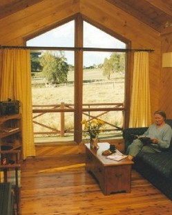 Wisteria Cottage - Mount Gambier Accommodation