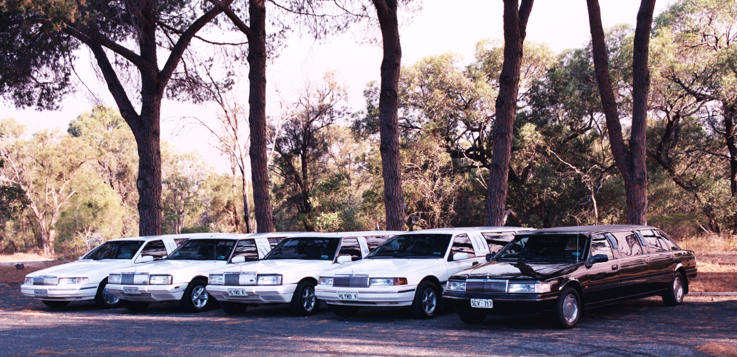 Hollywood VIP Limousines - Mount Gambier Accommodation