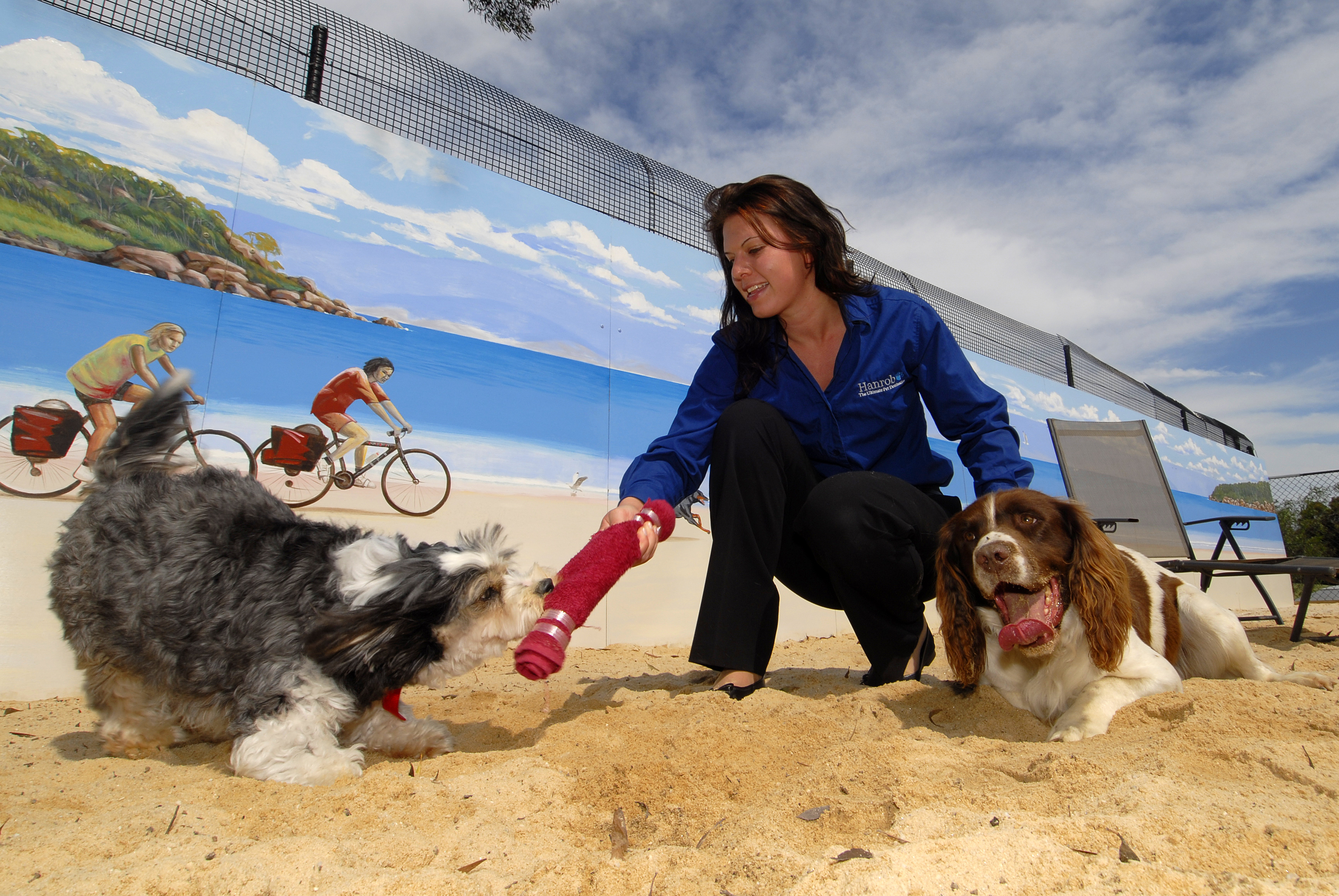 Hanrob Pet Hotels - Mount Gambier Accommodation