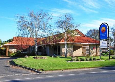 Comfort Inn Silver Birch - Mount Gambier Accommodation