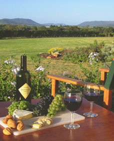 Tranquil Vale Vineyard Cottages - Mount Gambier Accommodation