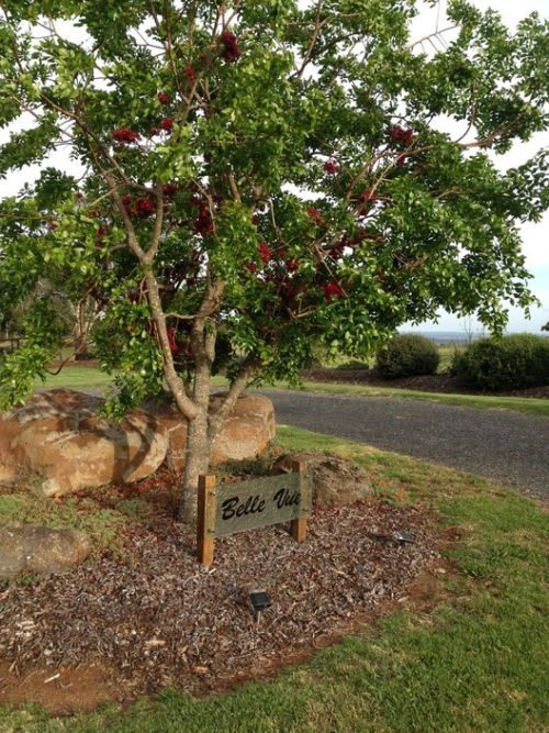 Belle Vue Studio - Mount Gambier Accommodation