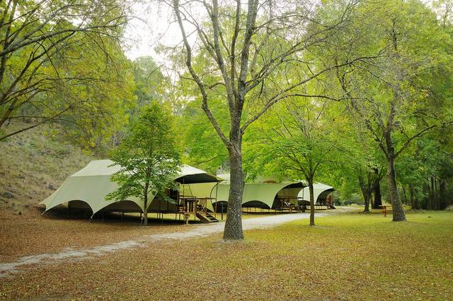 Buchan Caves Reserve - Mount Gambier Accommodation