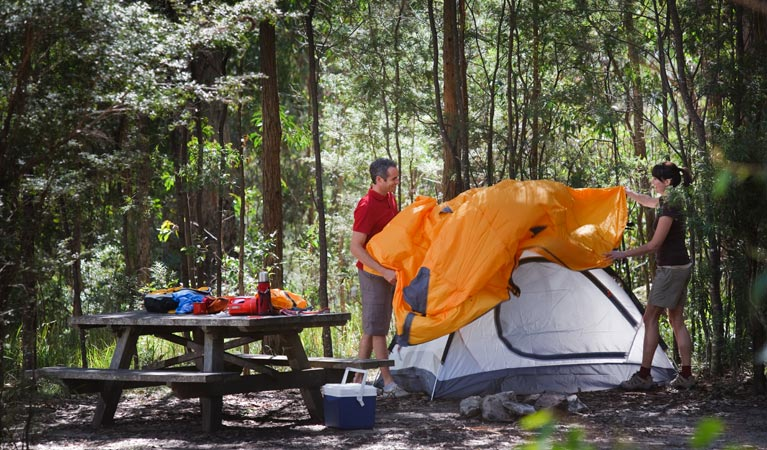 Bald Rock campground and picnic area - Mount Gambier Accommodation