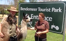 Bendemeer Tourist Park - Mount Gambier Accommodation