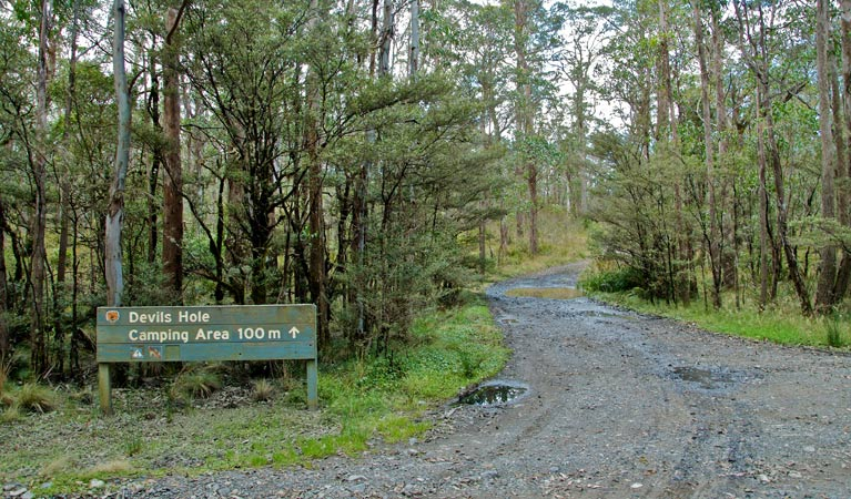 Devils Hole campground and picnic area - Mount Gambier Accommodation