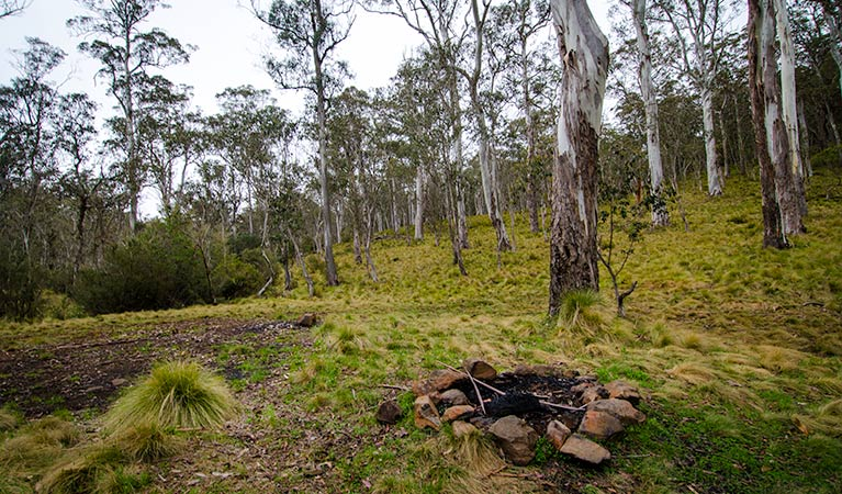 Gummi Falls campground - Mount Gambier Accommodation