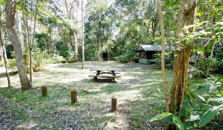 Iron Pot Creek campground - Mount Gambier Accommodation