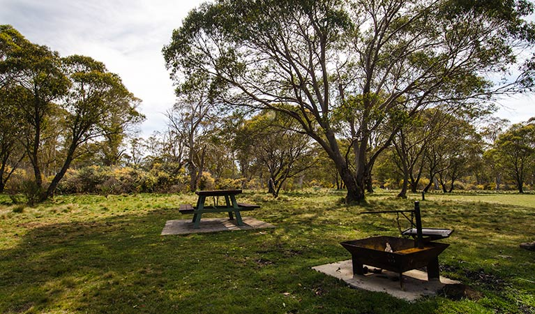 Little Murray campground - Mount Gambier Accommodation