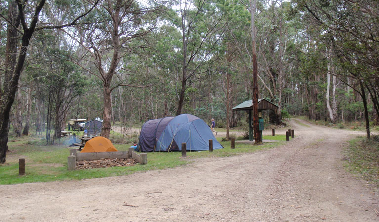 Native Dog campground - Mount Gambier Accommodation