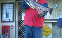 Rainbow Pines Tourist Caravan Park - Mount Gambier Accommodation