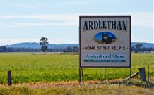 The Ardlethan Kelpie Caravan Park - Mount Gambier Accommodation