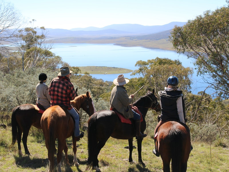 Reynella Homestead and Horseback Rides - Mount Gambier Accommodation