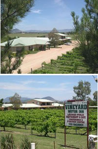 Mudgee Vineyard Motor Inn - Mount Gambier Accommodation
