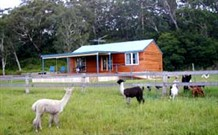 Moorallie Cottage Farm Stay - Mount Gambier Accommodation