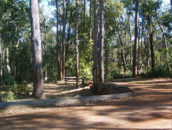 Barrabup Camp at St John Brook National Park - Mount Gambier Accommodation
