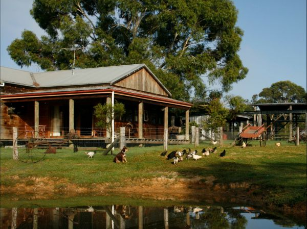 Tobruk Sydney Farm Stay - Mount Gambier Accommodation