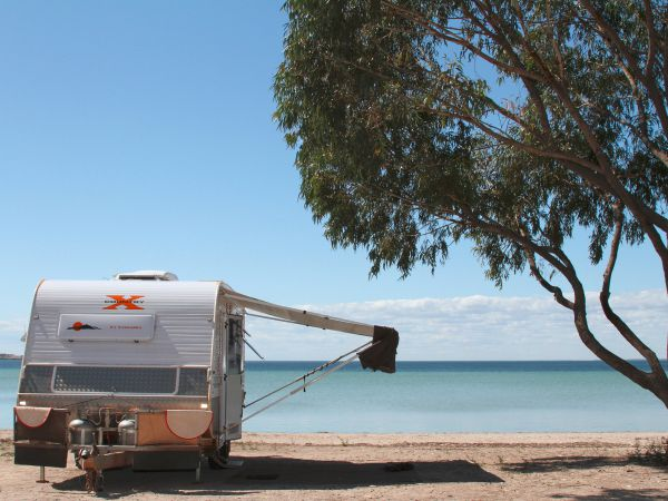 Discovery Parks - Streaky Bay Foreshore - Mount Gambier Accommodation