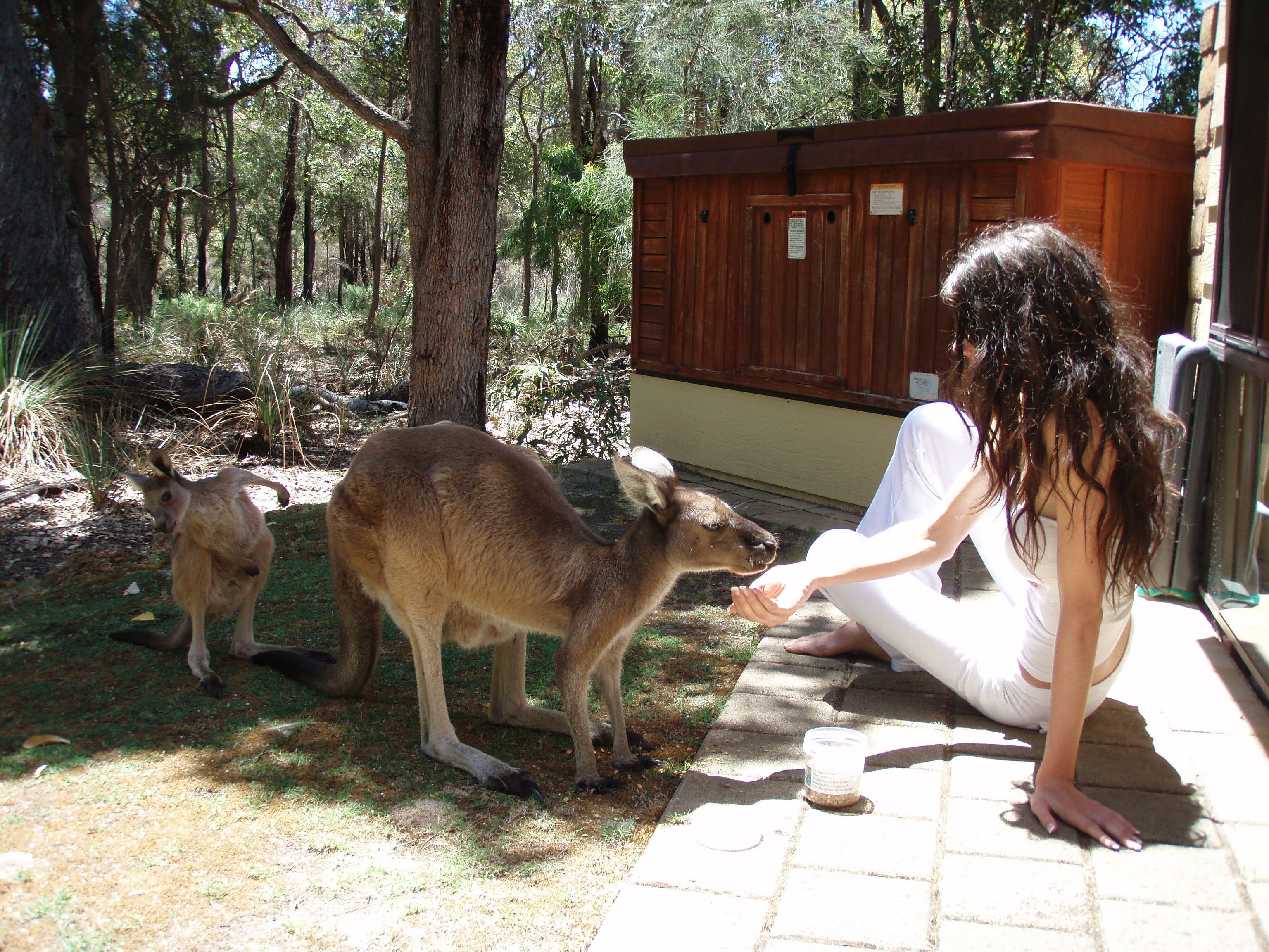 Yelverton Brook Eco Spa Retreat and Conservation Sanctuary - Mount Gambier Accommodation