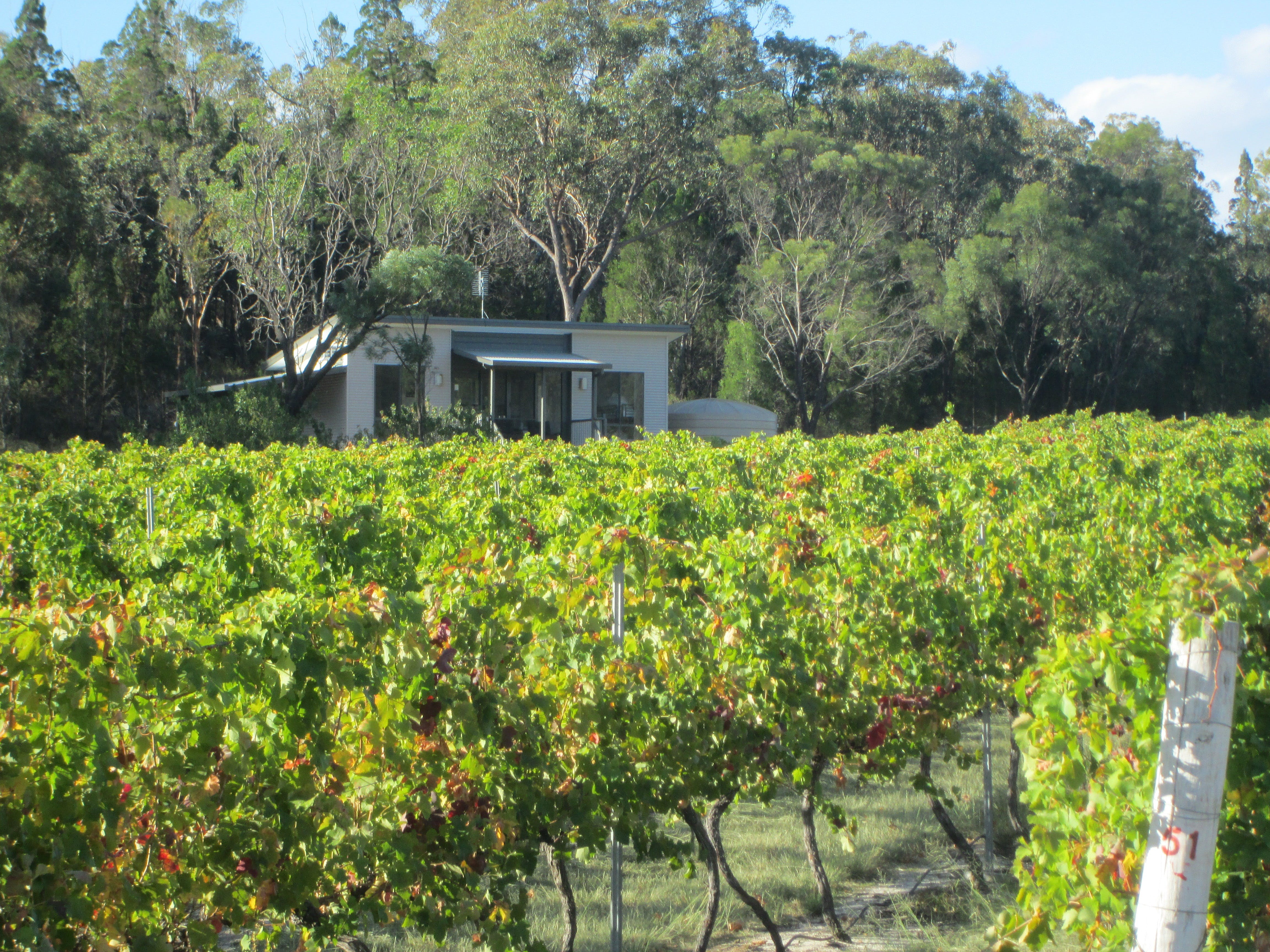 Just Red Wines Vineyard Cabins - Mount Gambier Accommodation