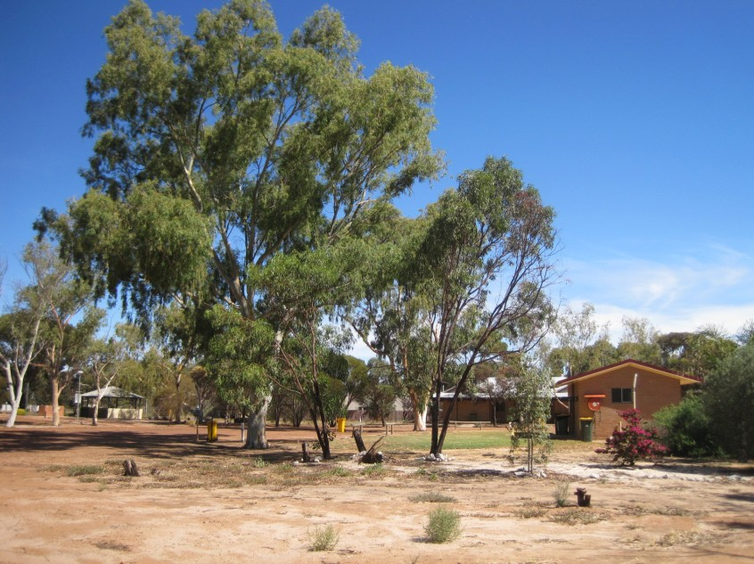Kondinin Caravan Park - Mount Gambier Accommodation