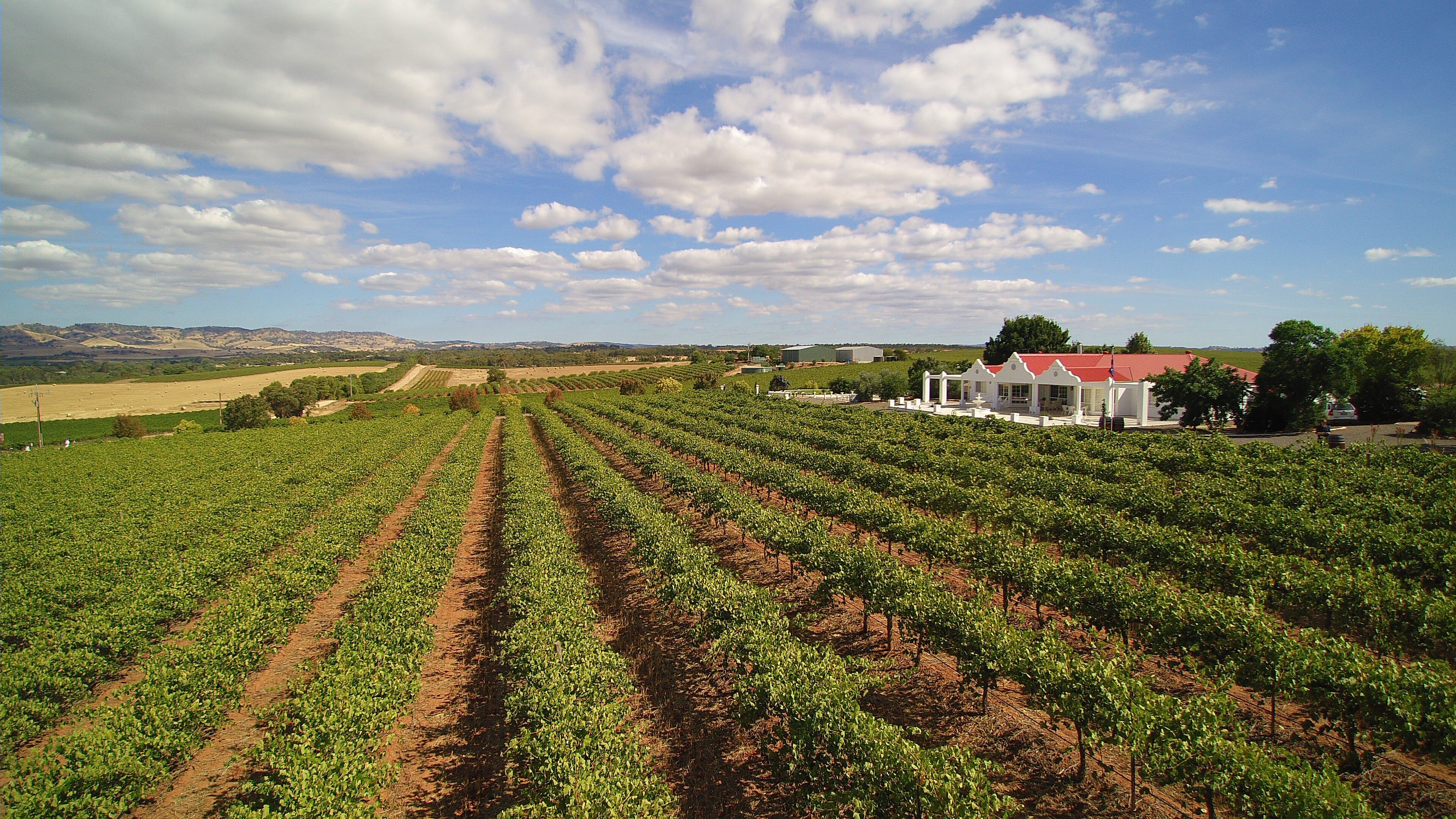 1837 Barossa Luxury Vineyard Cottages - Mount Gambier Accommodation