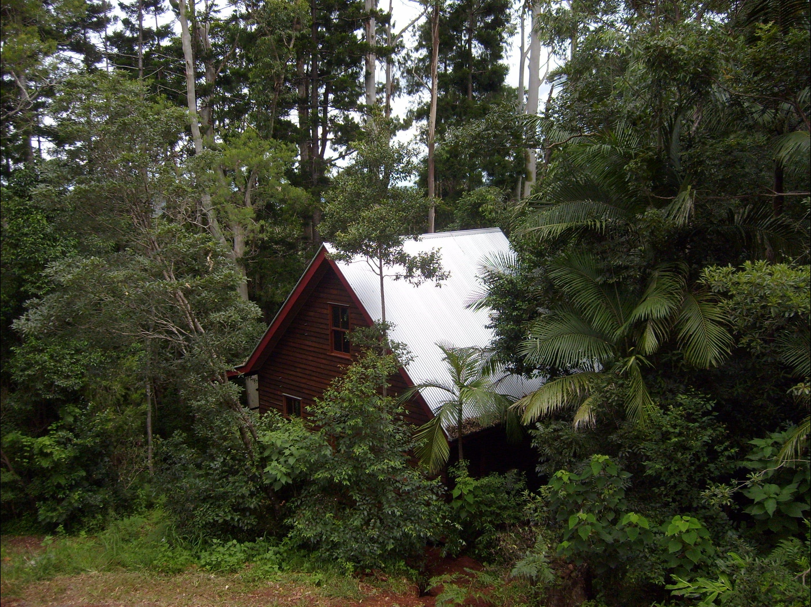 Turkeys Nest Rainforest Cottages Mt Glorious - Mount Gambier Accommodation