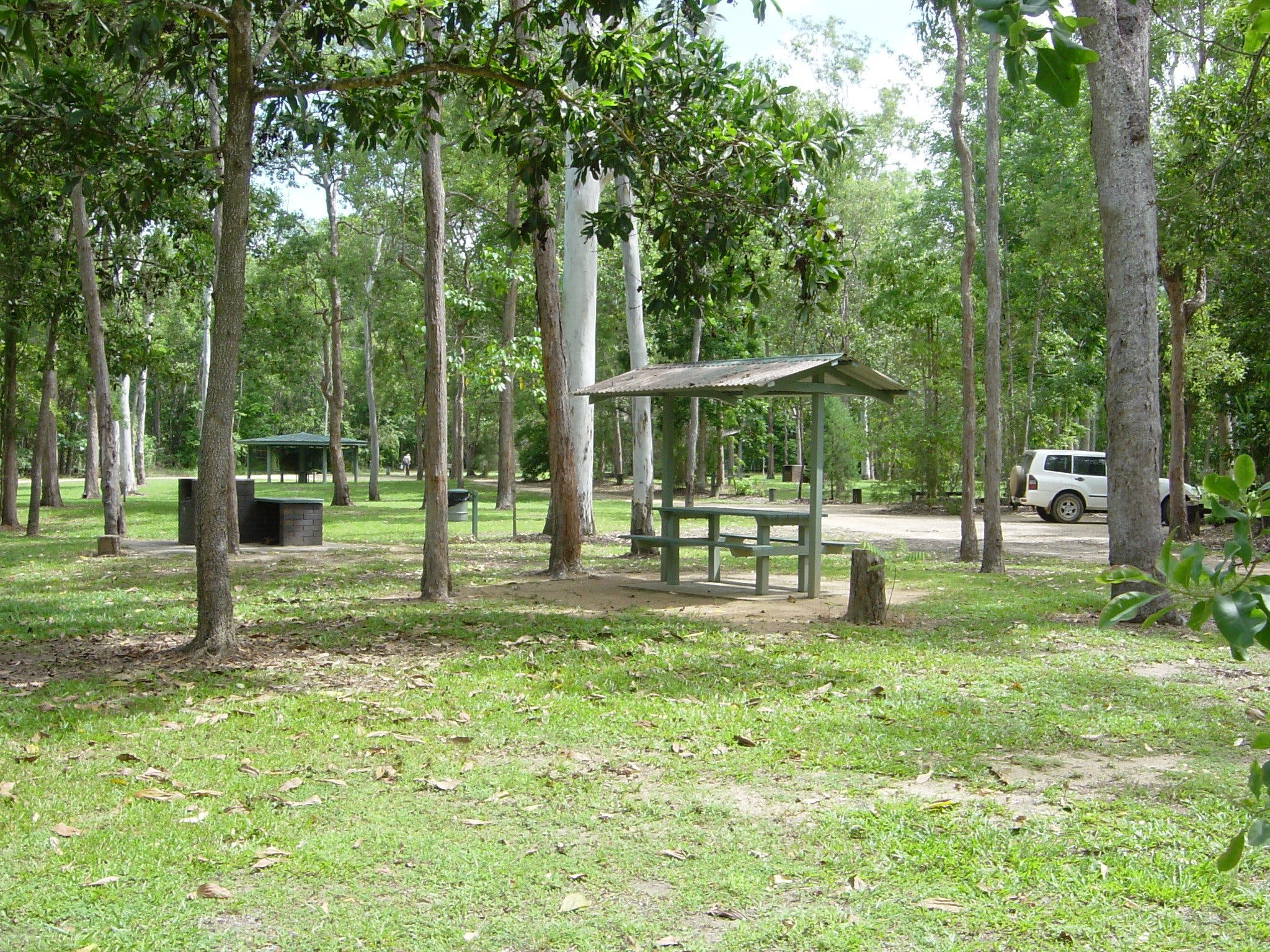 Broadwater camping area Abergowrie State Forest - Mount Gambier Accommodation