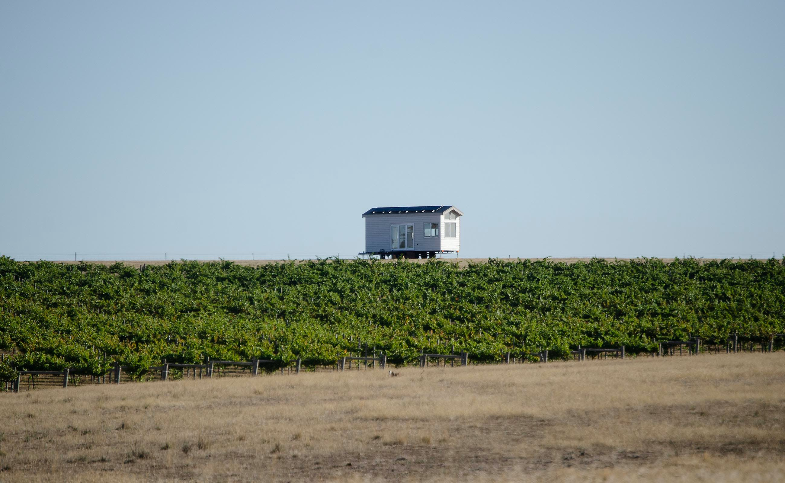 Hounds Run Vineyard - Mount Gambier Accommodation