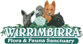 Wirrimbirra Sanctuary - Mount Gambier Accommodation