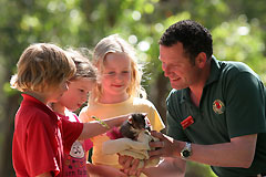 Cleland Wildlife Park - Mount Gambier Accommodation